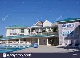 freeport bahamas unexso dolphinarium stock photo royalty free