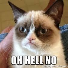 Oh Hell No Meme - grumpy cat oh hell no kelli d gordon iii texas usa