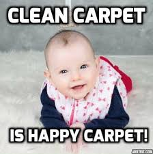 Carpet Cleaning Meme - extreme cleaning australia carpet cleaner mulwala new south