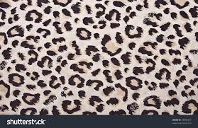 animal print leopard pattern fabric background stock photo