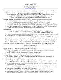 Resume Samples In Usa by Identity And Access Management Resume Sample Example Resume