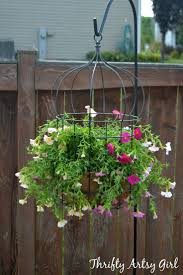 Outdoor Wall Hanging Planters by Best 25 Birdcage Planter Ideas On Pinterest Succulent Display