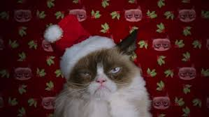 cat christmas grumpy cat s worst christmas tv review reporter