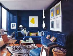 royal blue and brown living room home design ideas