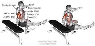 one arm bench dip exercise instructions and video weight
