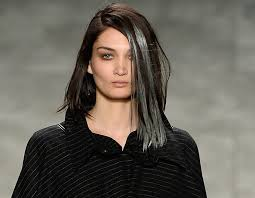 grey streaks in hair black hair with grey streak the best black hair 2017
