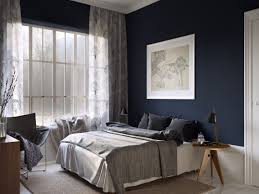 bedroom colors ideas master room best about painted tray ceilings