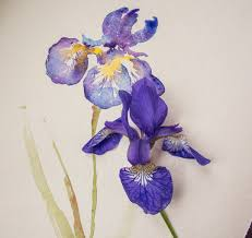 Iris by Watercolour Lesson Paint An Iris Flower With Angela Fehr Youtube