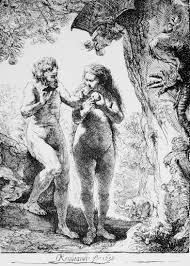 adams and eves chosen by stephen greenblatt author saturday