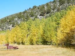 thanksgiving camping california autumn u2013 total escape