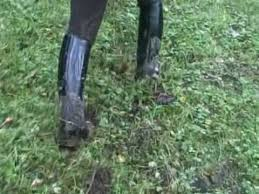 dirty riding boots muddy riding boots and spurs youtube