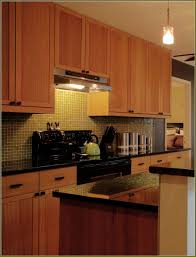 Large Cabinet Doors by Appealing Discontinued Ikea Kitchen Cabinet Doors 145 Discontinued