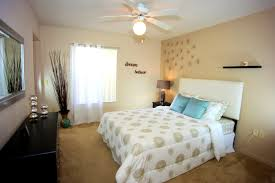Bedroom Decorating Ideas College Apartments Accessories Pleasing Apartment Bedroom Decorating Ideas For