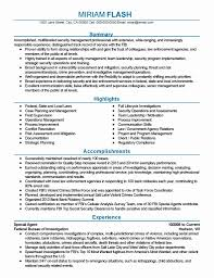 resume format for government 11 awesome federal government resume template resume sle