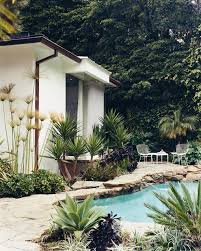 decoration petit jardin déco maison un petit oasis dans un désert jardin tropical shōko