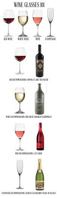wine facts kinds of wine the s 5 step guide to becoming a wino step guide wine and