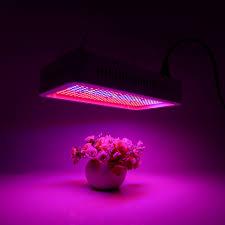 light for indoor garden zandalus net