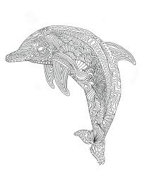 printable dolphin images printable dolphin coloring page for adults by triciagriffitharts on