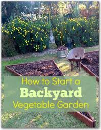 Backyard Vegetable Garden Ideas How To Start A Backyard Vegetable Garden Hometalk Gardening