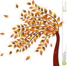 fall tree yellow leaves autumn tree illustration stock