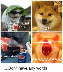 Bepis Meme - hey dogger want sum bepis yos nfinitedoggomemes here take it