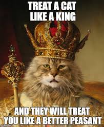 Peasant Meme - treat a cat like a king and they will treat you like a better
