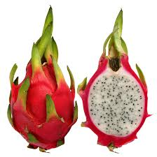 dragonfruit png google search fruit pinterest exotic fruit