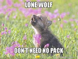 Lone Wolf Meme - lone wolf don t need no pack baby insanity wolf make a meme