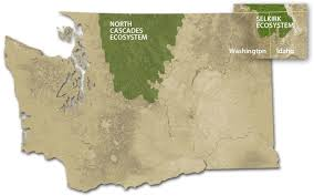 Washington On The Map by Western Wildlife Outreach Formerly The Grizzly Bear Outreach Project