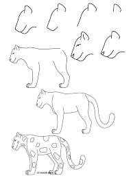 cute animal drawing step by step archives drawing of sketch