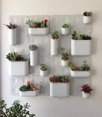 tiny cactus decor gift ideas small garden ideas