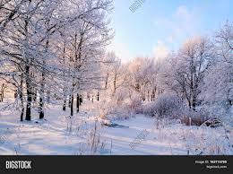 winter landscape frosty trees image photo bigstock
