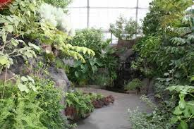 Us Botanical Gardens Dc Pathways With Green Plants In Washington Dc Us Botanic Garden