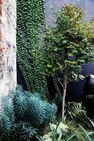Urban Garden Amsterdam 9259 Best Garden Images On Pinterest Landscaping Gardening And