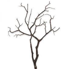 manzanita branches manzanita branches floral rentals pri productions inc