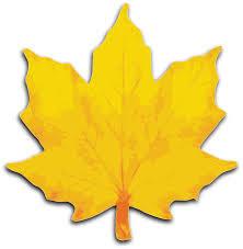 free oak leaf clipart clip art library