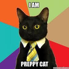 Talking Cat Meme - the talking cat
