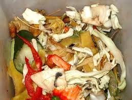 food waste wikipedia
