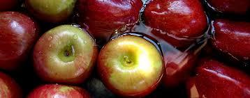 fruit fresh should i wash fresh fruit in vinegar bestfoodfacts org