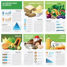 nutrition brochure template health and nutrition food by infographic chart diagram