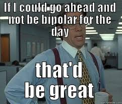Bipolar Meme - funny bipolar meme google search bi polar memes pinterest