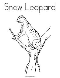 snow leopard coloring page twisty noodle