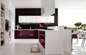 Modern Kitchen Furniture Ideas Brilliant Modern Kitchen Mats Mat Great With Image Of Decorating