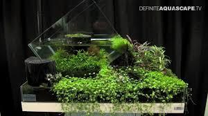 aquascaping the art of the planted aquarium 2013 nano pt 3 youtube