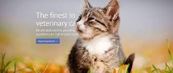 Garden City Family Medical Centre Garden City Veterinary Care Veterinarian In Mineola Ny Usa Home