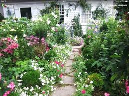country garden plants traditional landscape french country garden design pictures remodel decor and ideas page 3 country garden plants