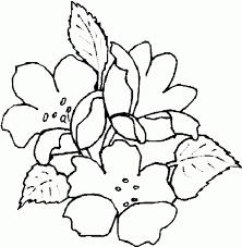 dibujo flores colorear dibujos infantiles flores