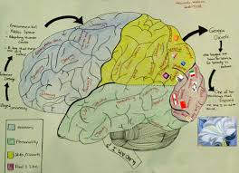 me where i am on a map mind maps hawraa rahma