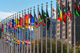 United Nation Flag 325763 1 Jpg