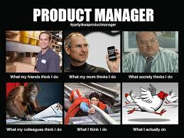 Meme Manager - what product managers do meme cranky product manager humor